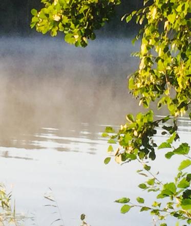aamusumu järvellä